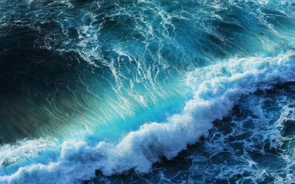 SeaWavebyunknown.jpg