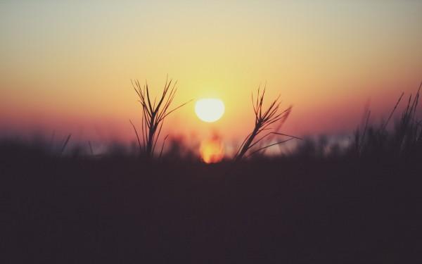 Sunrisebybokehlicia.jpg